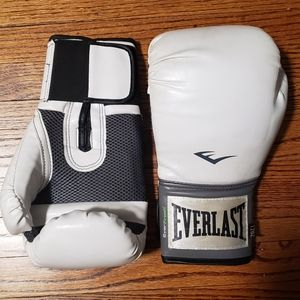 Everlast 12oz kickboxing gloves
